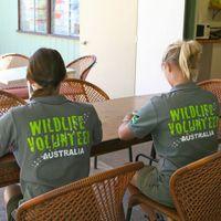 Wildlife Volunteers  Intake 03 May 2011