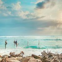 Hurra! Tilbudet på programmet Frivillig arbeid med Skilpadder på Sri Lanka fortsetter, med 10% rabatt! ?  Kanskje du alltid har drømt om å oppleve Sri Lankas langstrakte hvite strender, men også har lyst til å bidra til vekst for den minkende skilpaddebestanden?  Da er dette programmet perfekt for deg! ?  Men husk at du må melde deg på før den 30. August!⏳  Utsett høsten litt til og meld deg på i dag ➡️https://www.goxplore.no/program/sea-turtle-conservation
